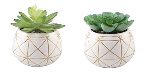 Flora Bunda Artificial Plants Cactus Set of 2 Mid Century Artificial Succulent in 4