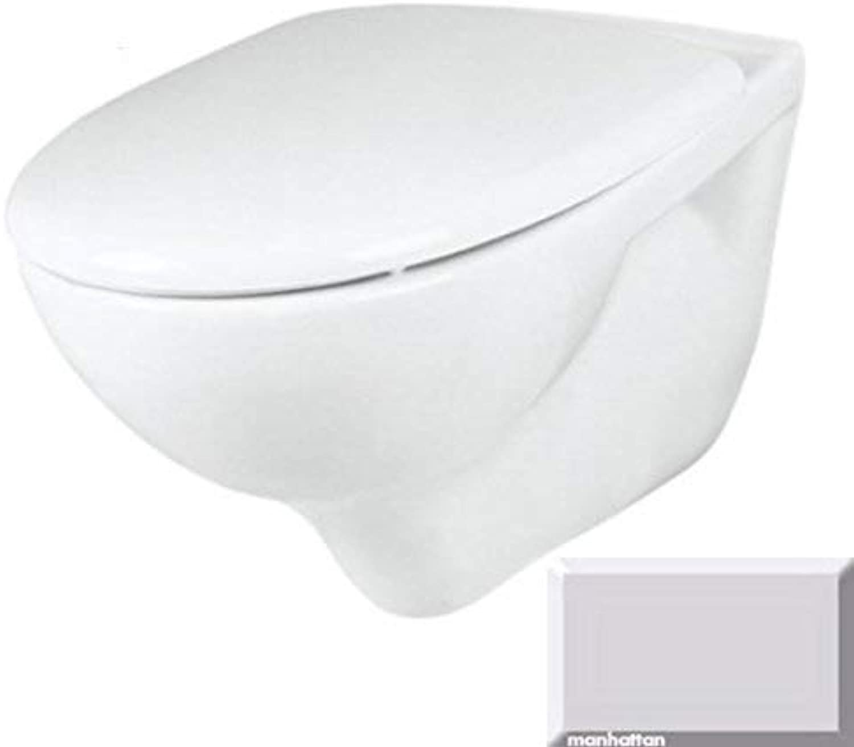 Wand WC Tiefspüler Tiefspülklosett Farbe MANHATTAN - GRAU