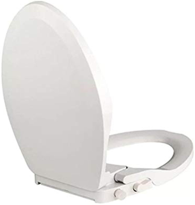 HSJDP Doppeldüse Intelligente Toilettendeckplatte Absteigend Damenwsche Reinigung Krper Umweltschutz Toilette Waschen Butt Cleaner