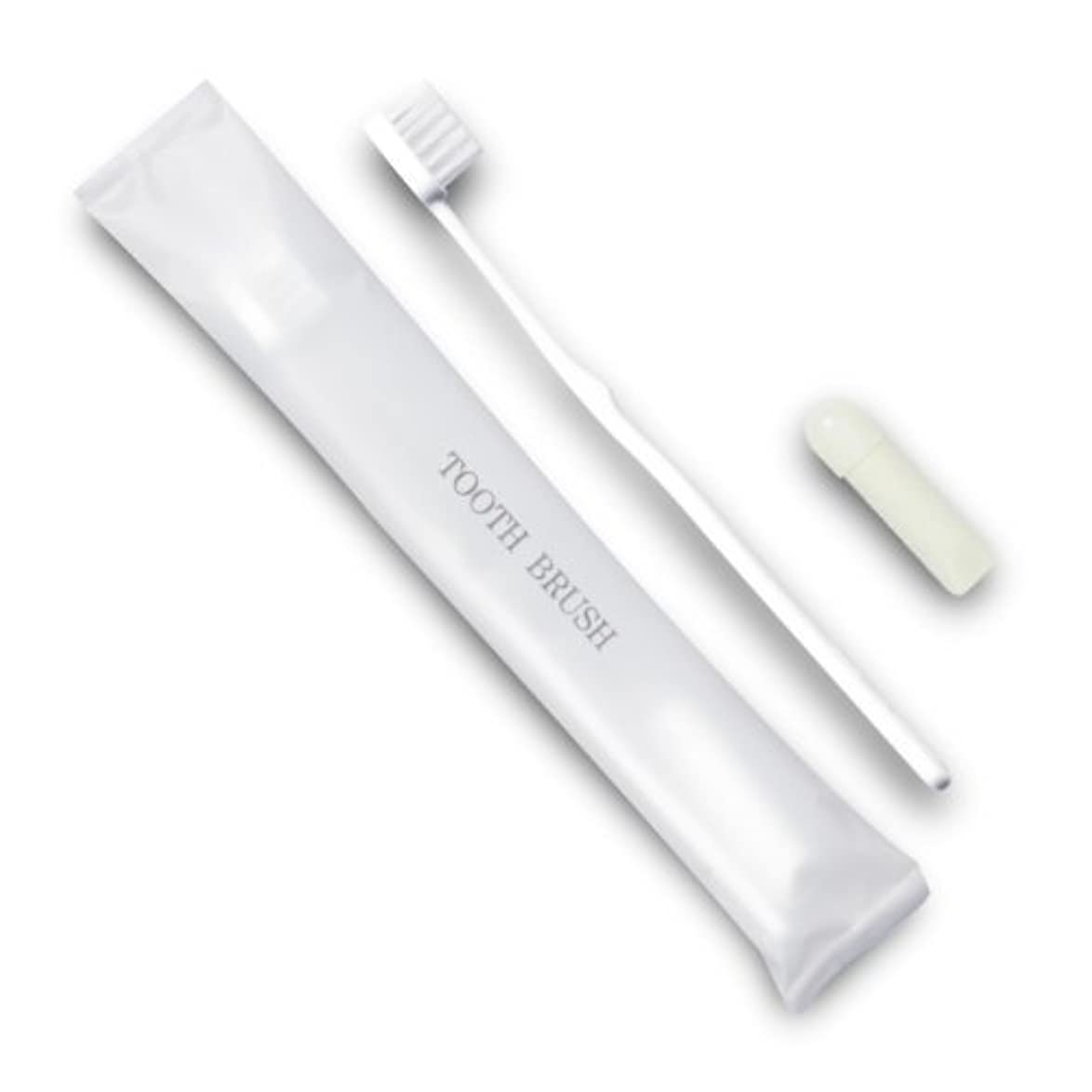 件名シェーバー物理ホテル業務用歯ブラシ21穴(白)3gチューブ マット袋FタイプDX 700本