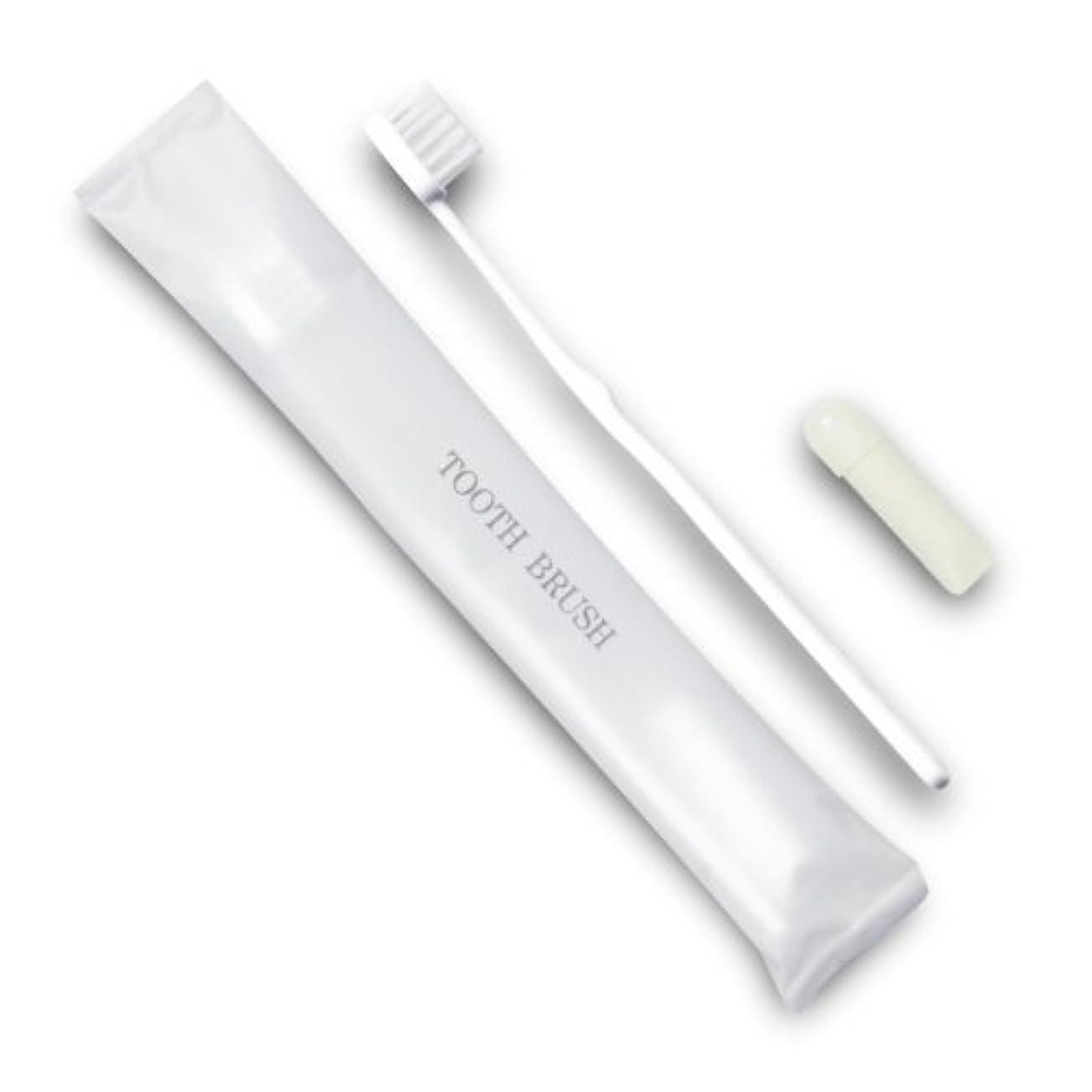 アクセサリーカヌー長々とホテル業務用歯ブラシ21穴(白)3gチューブ マット袋FタイプDX 700本