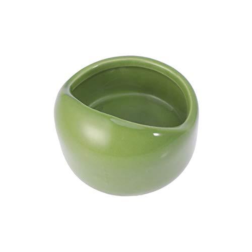 POPETPOP Ciotola per criceti in Ceramica Piatto per Alimenti Resistente alla masticazione per Piccoli roditori Gerbil criceti Topi cavia cavia Riccio Animali (Verde)