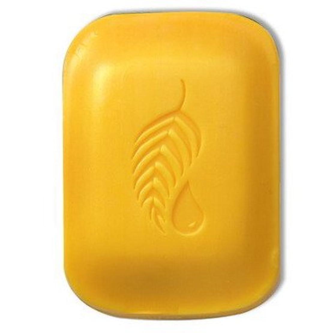 床フルーツ聴覚障害者【Melaleuca(メラルーカ)】ゴールド バー トライアルサイズ42.5g [並行輸入品]