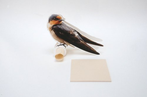 メモパッド 小鳥のメモスタンド E柄 ツバメ 80シート付き メモホルダー