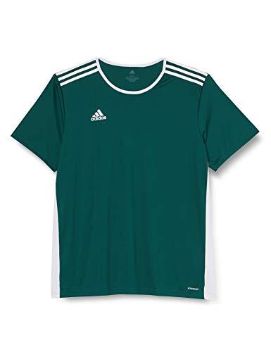 adidas Entrada 95 Camiseta de Fútbol para Hombre de Cuello Redondo en Contraste, Verde (Collegiate Green/White), S