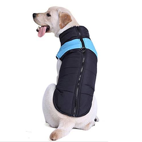 WangLiJiaFDSGB Srtytr Hund Baumwollweste Skianzug, Größe: 5XL, Brust: 68cm, Rückenlänge: 60cm (orange) (Color : Blue)