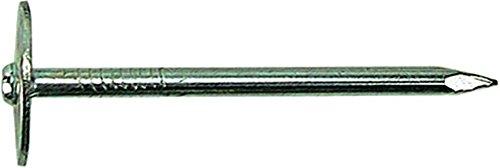 Fs leichtbauplattenstifte 891700-31/40 2,5 kg