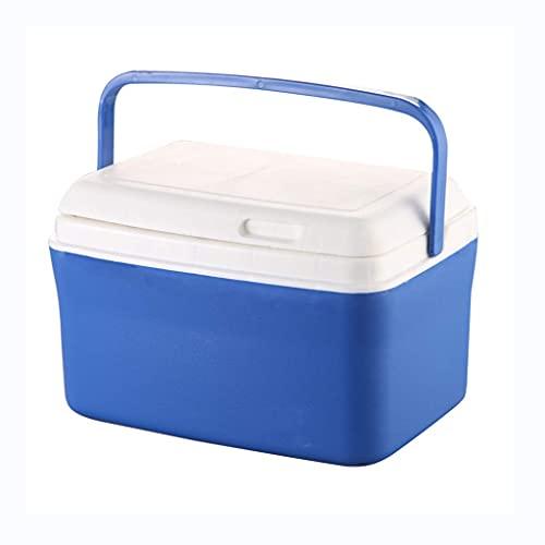 Refrigerador/congelador portátil compacto para coche, mini nevera, botella de vino para viajes, picnic, camping, hogar y oficina, uso 8L/13L