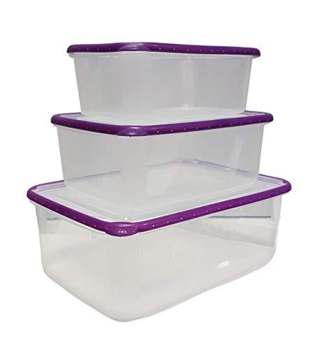 Cflagrant Lot de 3 Grandes Boites 100% Hermétiques Sans BPA Compatibles Congélateur, Micro-ondes et Lave vaisselle : XL: 4 Litres - L: 2 Litres - M: 1.2 Litres Coloris Aléatoire