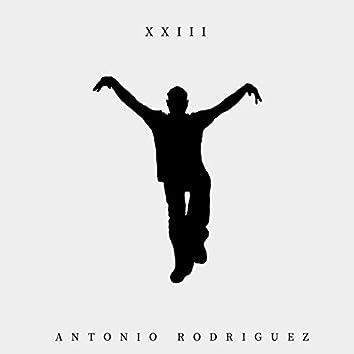 XXIII (feat. Daniel Benavides)