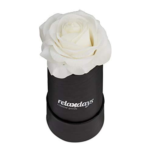 Relaxdays Rosenbox rund, 1 Rose, stabile Flowerbox schwarz, 10 Jahre haltbar, Geschenkidee, dekorative Blumenbox, weiß
