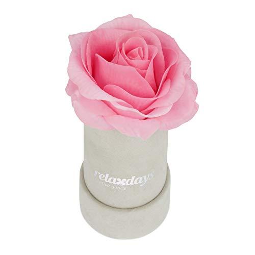 Relaxdays Rosenbox rund, 1 Rose, stabile Flowerbox grau, 10 Jahre haltbar, Geschenkidee, dekorative Blumenbox, rosa