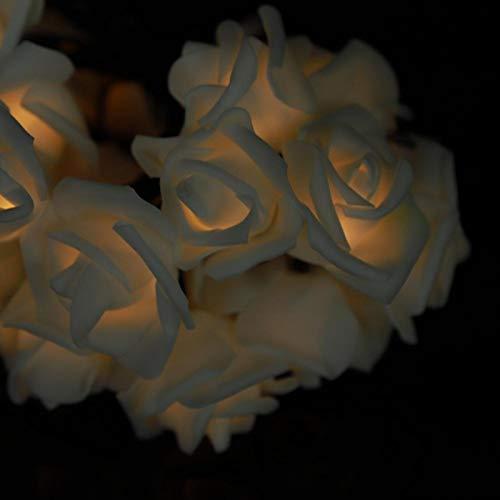 respetuoso del medio ambiente ahorro de energía flor cadena luz 6 metros Rose String lámpara flor cadena fiesta lámpara para boda (blanco cálido)