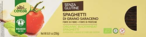 ALTRICEREALI Buchweizen Spaghetti (1 x 250 g)