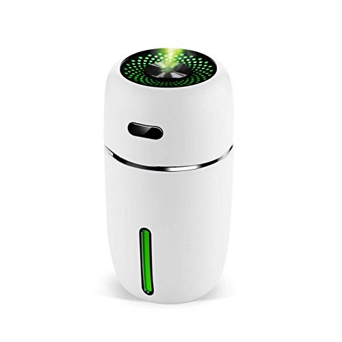 Lion Palace - Best Car Mini USB Car Aromatherapy Diffusers Car Humidifie (2 in 1), Car Office Room Bedroom, etc.(White)