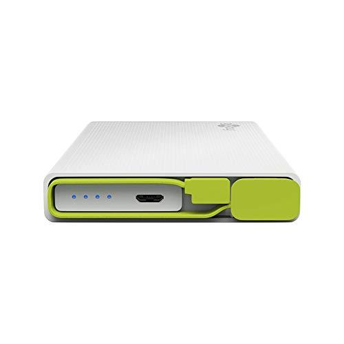 Goobay PowerBank 10.0 Powerbank (Zusatzakku) LiPo 10000 mAh