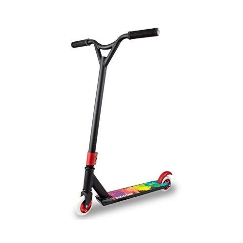 FYZS Kick Scooters Adultos, Viajero Scooters, soporta hasta 100 kg, no eléctricos, los Mejores Regalos, 2 Scooter de Rueda (Color : Multi-Colored)