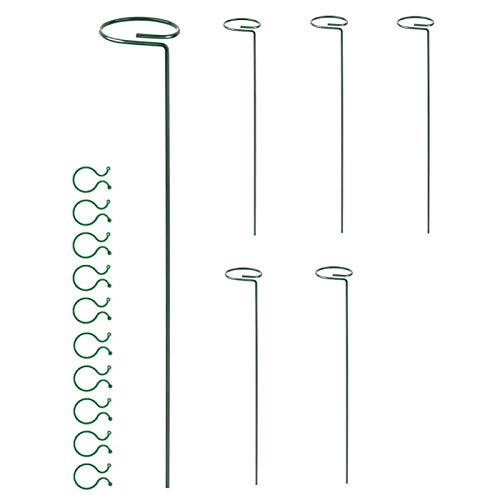 JVSISM 6 Pack Plant Support for Amaryllis Flowers - Steel Stakes for Single Stem Potted Plant Cage for Tomatoes Rose Lily Clove