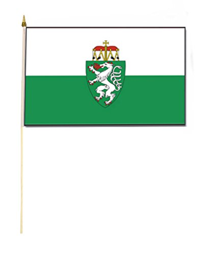 Stockflagge/Stockfahne STEIERMARK mit Wappen Flagge/Fahne ca. 30 x 45 cm mit ca. 60cm Stab/Stock