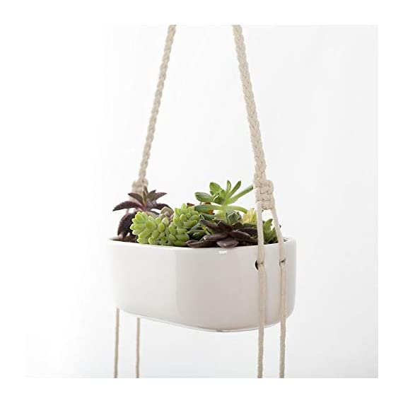 Mkono Ceramic Hanging Planter 3 Tier Indoor Wall Plant Holder for Succulent Herb Air Plant Live or Faux Plants Modern Vertical Garden , Rectangular 4 The 3-tier hanging planter is a functional and chic planter. It's a good way to let your creativity go wild, displaying the succulent, cactus, herb, air plant, ferns, orchids and other small plants with colorful pebbles, sea shell. NO plant included in this item! The ceramic wall hanging planter combine modern design and farmhouse statement that breathe life into your home, apartments, condo units, offices, living rooms, bedrooms, balcony, patios, garden, yard, even weddings, parties and more without taking too much space. The rectangle succulent pots are made of good quality white ceramic and adjustable cotton rope. Each ceramic hanging pot has draining hole in the bottom that prevent stagnant water and help you prolong the life of your precious plants.