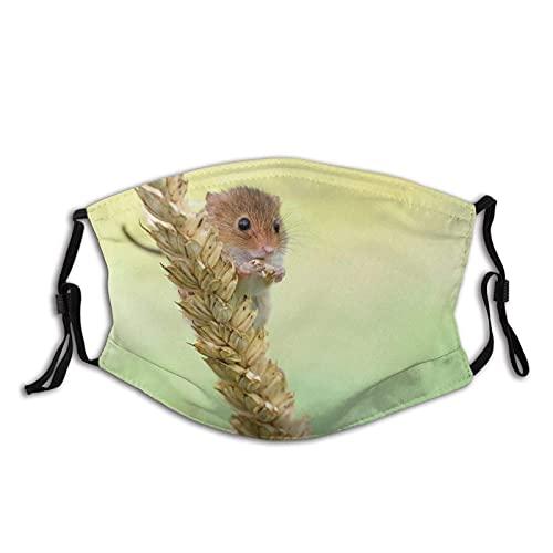Máscara facial de moda cómoda Mouse Grano Naturaleza Sun-Proof Moda Bandana Headwear para la pesca