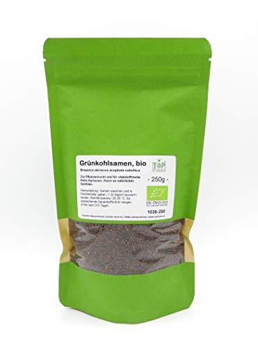 Topfruits Grünkohl Samen bio, 250g, Keimfähige Grünkohlsamen für Grünkohl Sprossen und Microgreens