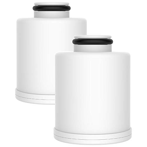 AQUACREST FXSCH Shower Water Filter, Replacement for GE FXSCH, with Advanced KDF Filtration Material (Pack of 2)