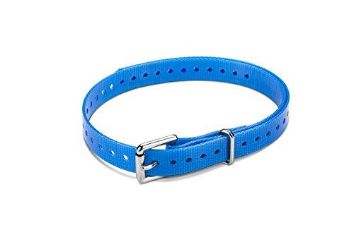 Garmin 1,9 cm Halsband-Rolle, Schnalle für Delta-Serie Hunde