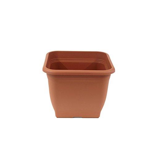 jardinera greemotion Pia Terracotta - maceta 19x19cm - maceta cuadrada 3L - maceta plástica resistente a los rayos UV - maceta a prueba de heladas - maceta con orificios inferiores - accesor