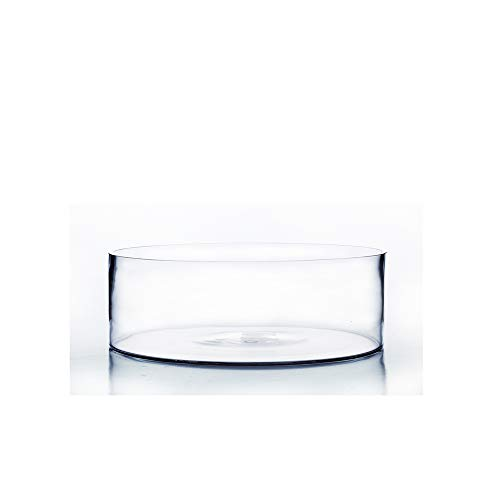 """WGV Cylinder Vase Bulk, Open Width 8"""", Height 4"""", Clear Flat Pan Style Container, Planter Terrarium, Floral Centerpiece for Wedding Party Event, Home Office Decor, 6 Pieces"""