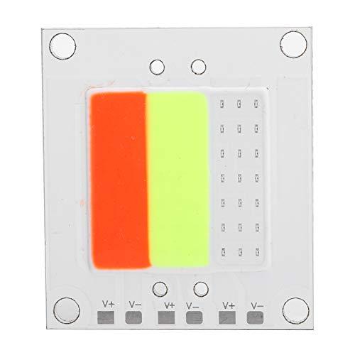 40X40mm 50W LED Fuente de luz integrada Bombilla COB de alta potencia Luz de inundación Rojo Verde Azul, Tablero de luz LED COB, Alto brillo, Baja degradación de luz, Alta reproducción de color, Emisi