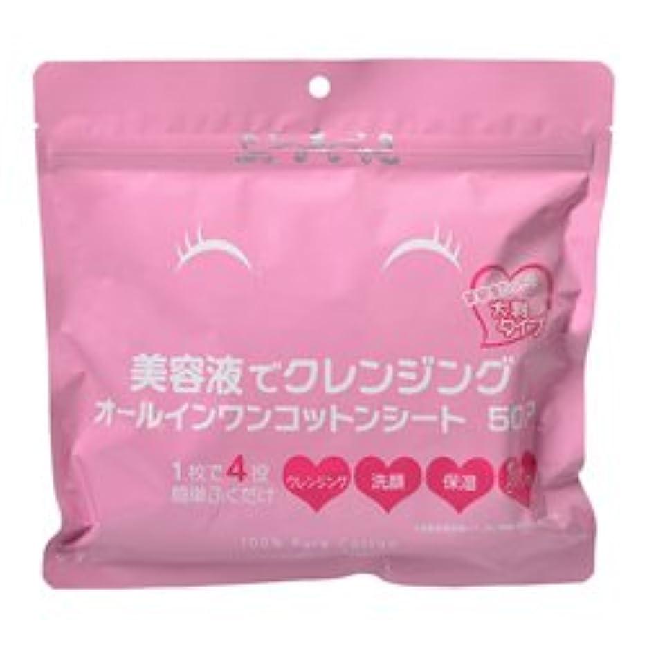 ストッキングクリーナーキャッシュ【Stay Free】美容液でクレンジング オールインシート 50枚 ×10個セット