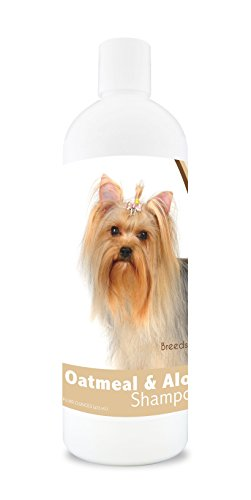 Healthy Breeds Dog Oatmeal Shampoo With Aloe For Yorkshire Terrier - Over 75 Breeds – 16 Oz - Mild And Gentle For Itchy, Scaling, Sensitive Skin – Hypoallergenic Formula And Ph Balanced