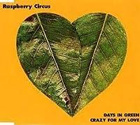 DAYS IN GREEN/ロックン・ロールに首ったけ~CRAZY FOR MY LOVE