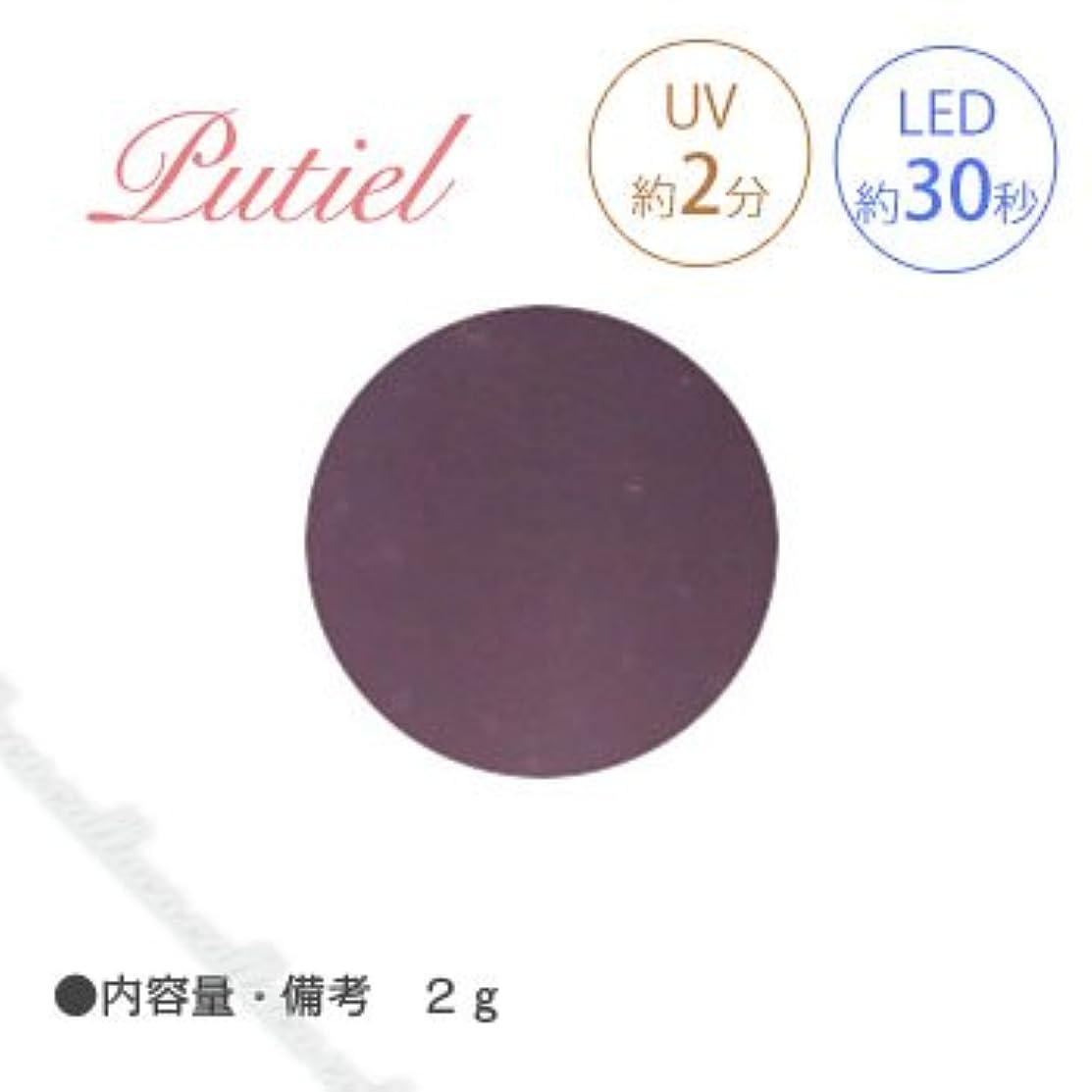 アレンジ興奮するアミューズメントPutiel プティール カラージェル 503 チョコソース 2g