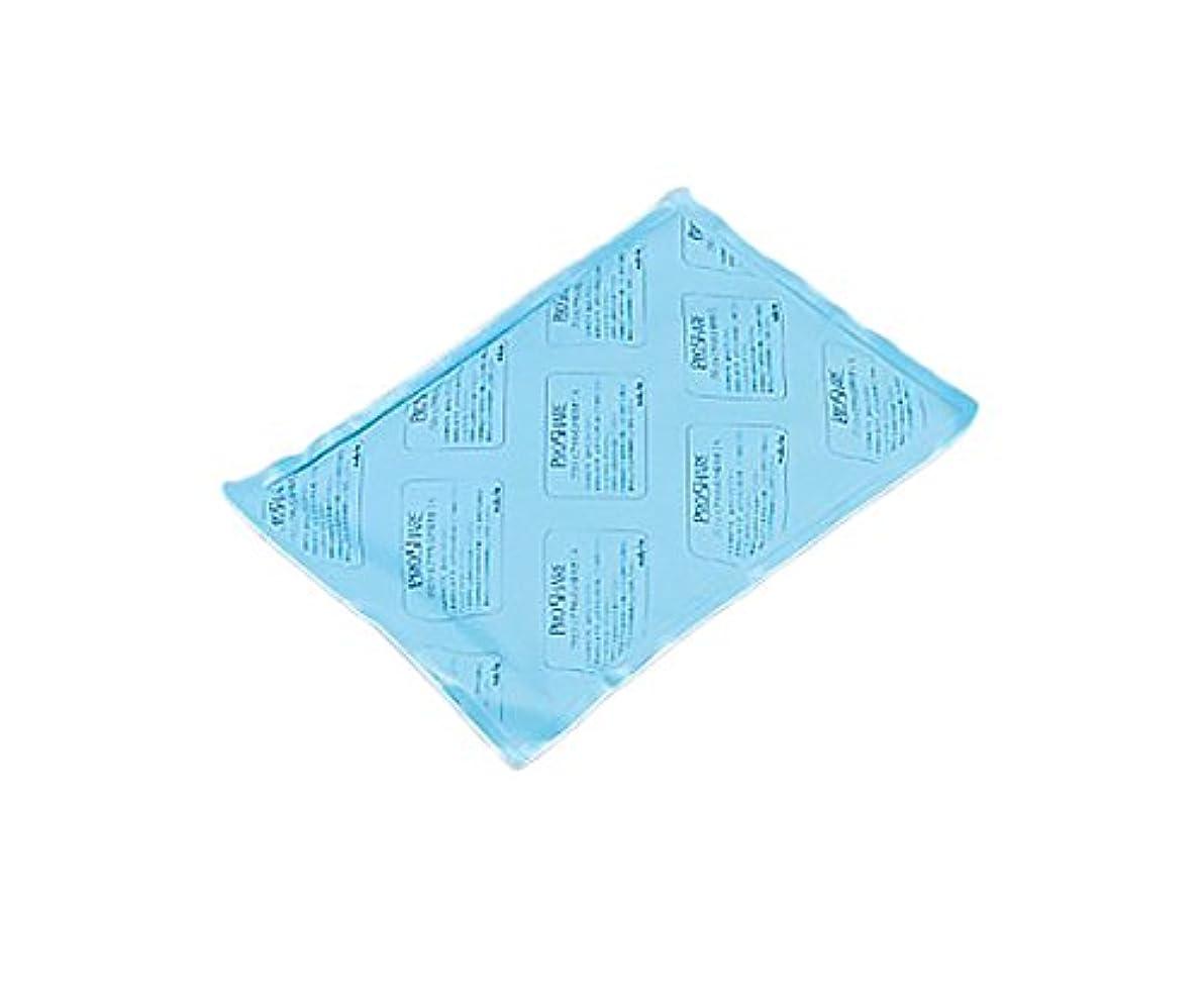 解き明かす失効急流アズワン プロシェアやわらか保冷枕 レギュラー