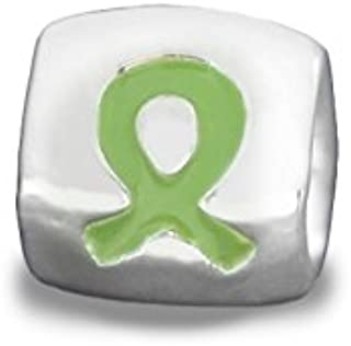 Fundraising For A Cause Lime Green Ribbon Awareness Charm