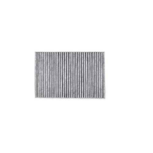Filtro de Cabina de Filtro de Aire 2pcs Fit for Audi A4 8E B6 B7 2000-2009 / A6 C5 Avant 2000-2005 / Audi allroad C5 2000-2005 Conjunto de filtros de automóviles Modelo (Color : 1 Pcs Cabin Filter)