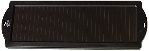 Ring Automotive RSP150 Cargador Solar para baterías de Coche, 12V 1.5W