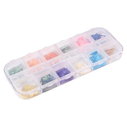 Pixnor 1 Boîte Nail Art Shell Coquillage Nail Art Décalcomanies 3D Nail Art Décoration Kit 3D Manucures Salon de Beauté Décalcomanies à Ongles pour Femmes Dame