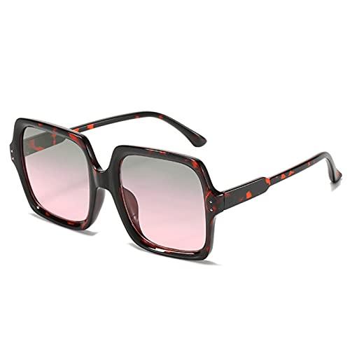 DWAC Gafas de Sol Cuadradas Retro Mujeres, Gafas de Sol Gafas de Moda Gafas Femeninas All-Match Gafas de Sol Al Aire Libre (Color : C)