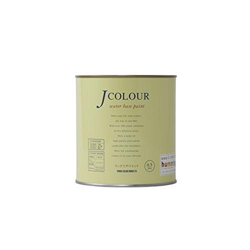ターナー JCOLOUR ターコイズブルー 0.5L JC05VI2A