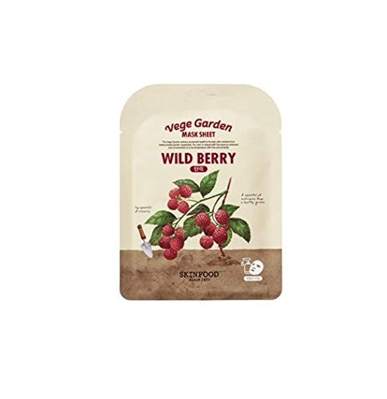 到着する下威信Skinfood ベジガーデンマスクシート#ラズベリー* 10ea / Vege Garden Mask Sheet#raspberry *10ea 20ml*10 [並行輸入品]