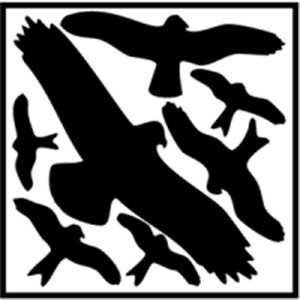 Aufkleber Piktogramm Vogelschutz Set 29x32cm schwarz