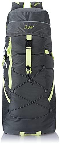 Skybags Echo 22 cms Grey Rucksack (Echo)