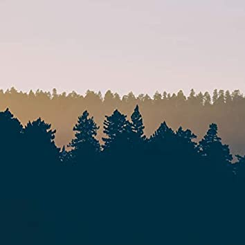 Summer 2021 Meditation Playlist for Restoring and Studying