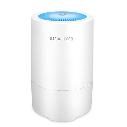 RIGOGLIOSO Air Purifier for Home...