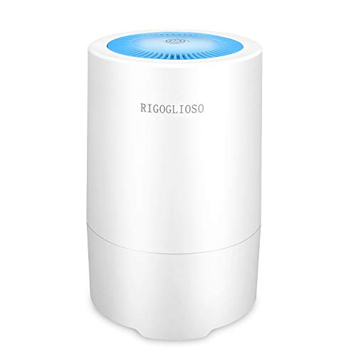 RIGOGLIOSO Air Purifier for Home Allergies and Pets in Bedroom,True HEPA Air Purifiers Filter, Super...