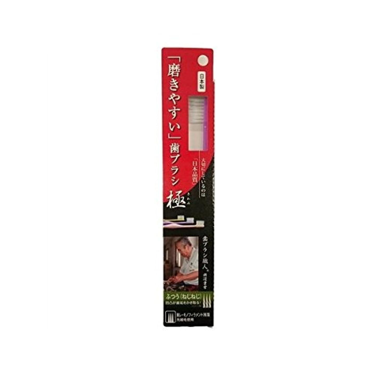 広がり省バスタブライフレンジ 磨きやすい歯ブラシ極 1P*12本入り LT-28ふつう(ねじねじ)