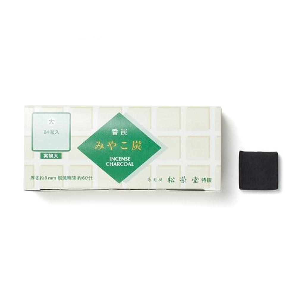 パイント真空苦い松栄堂の香炭 みやこ炭 B大24粒 緑箱 #750112